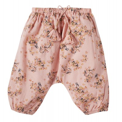 Printed pant Willy flowers